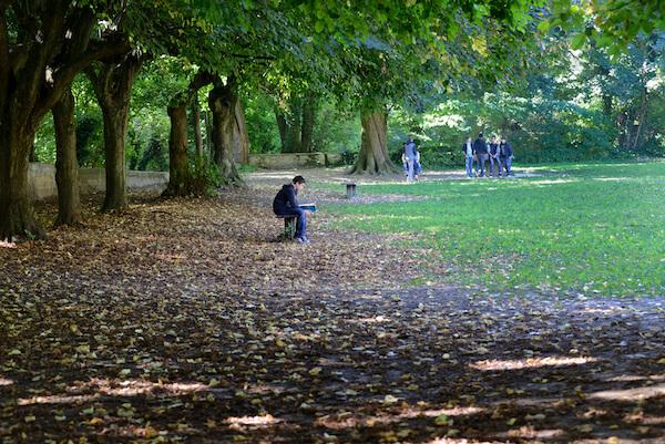 Etude dans le parc du college