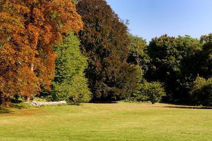 Le parc du de l'intenat du Luat